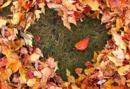 Saiba de que forma o Equinócio de Outono vai afetar o seu signo