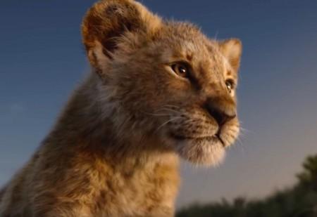 Saiba de que forma a energia do signo Leão influencia a sua vida!