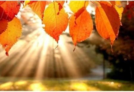 O Equinócio de Outono - faça uma pausa para respirar fundo!