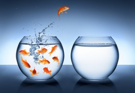 Atreva-se a deixar a sua zona de conforto - 4 passos para mudar